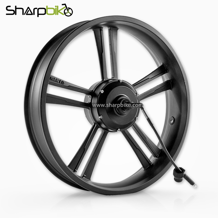 MTF04-1000w-1500w-20-inch-fat-tire-motor-wheel