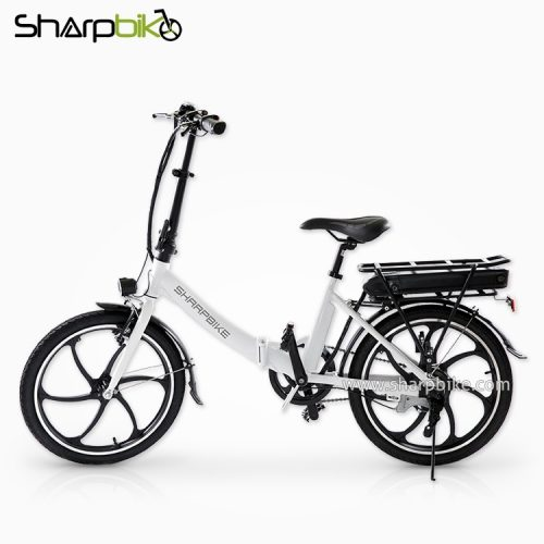 SP20EFB-G-ce-standard-electric-bicycle
