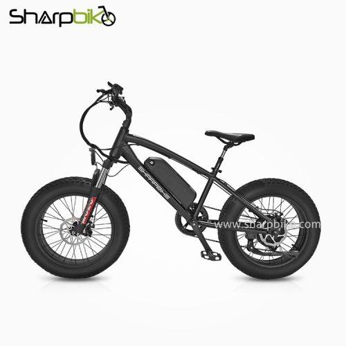 SP20EFB-Y-20-inch-fat-tire-electric-bike