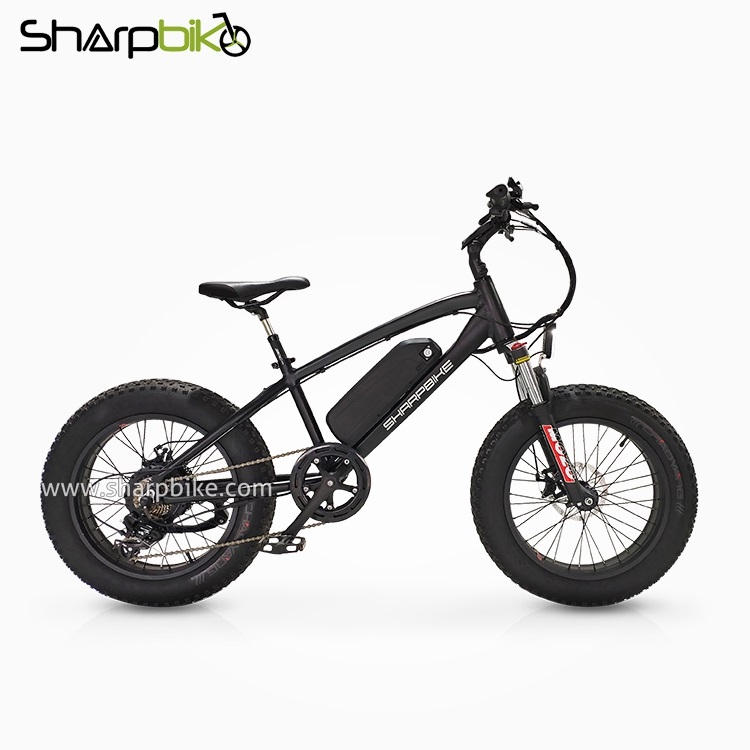 SP20EFB-Y-02-20inch-fat-tire-e-bike