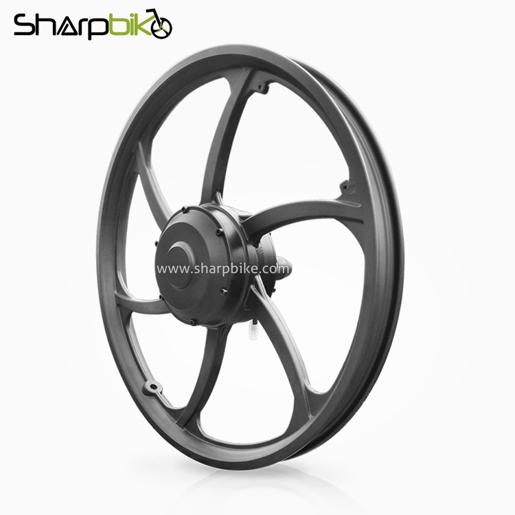 MT921D-electric-bicycle-one-side-shaft-motor-single-shaft-hub-motor