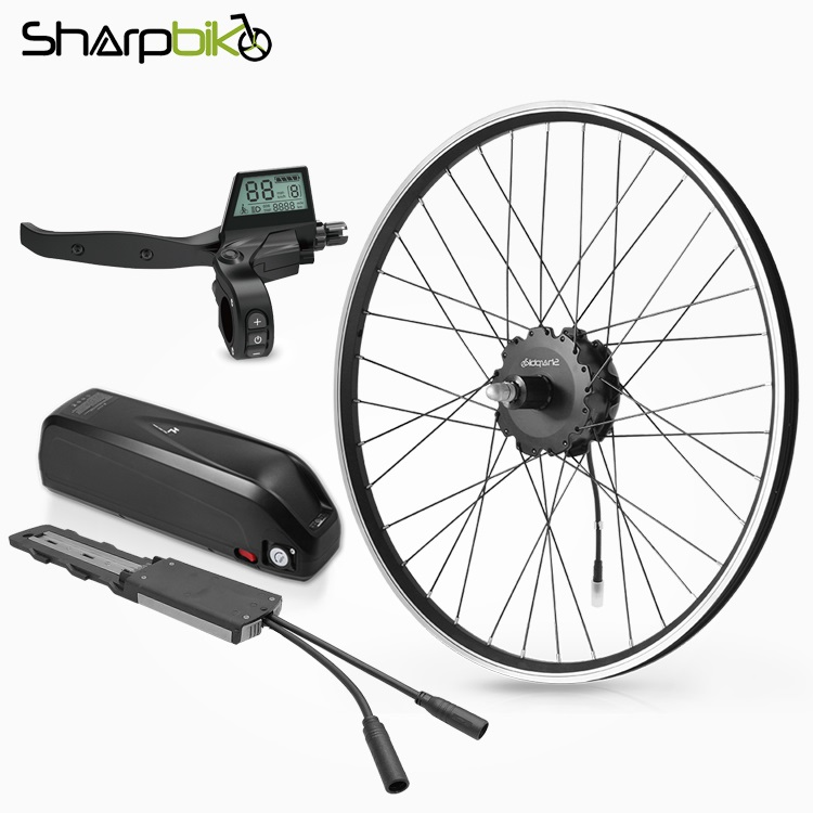 SK05CB-20-inch-rear-wheel-hub-motor-350-watt-electric-bike-conversion-kit